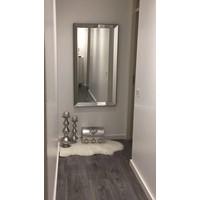 Spiegellijst met spiegel - zilver 70x130