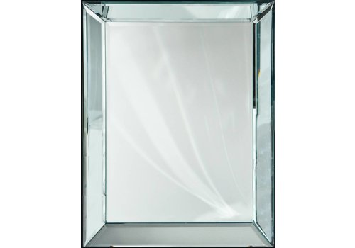 Domestica Interior Design Spiegel met spiegelrand - zilver 110x210 cm