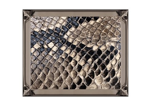 Fotolijst slangenhuid - brons 50x60
