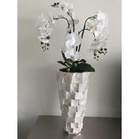 Schelpenvaas hoog - wit 65 cm  - met orchideeën