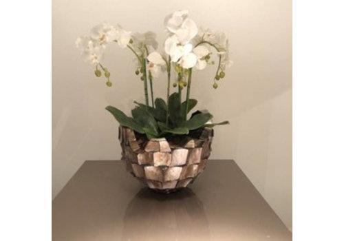 Schelpenvaas broken bowl - bruin met orchideeën