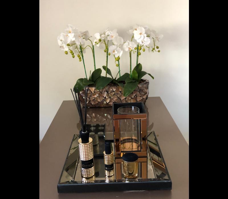 Schelpenvaas breed met orchideëen - bruin 60 cm