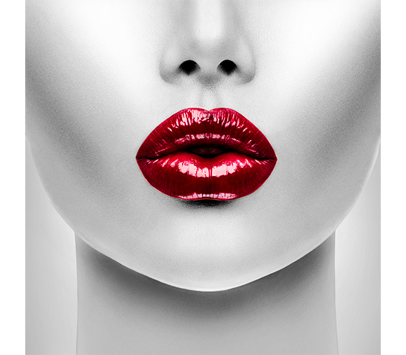 Aluminium Art - Kunstwerk - Red Lips