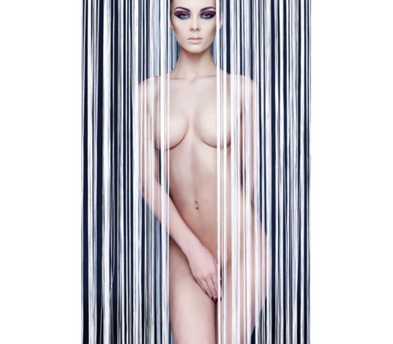 Aluminium Art - Interior 2 Woman Nude