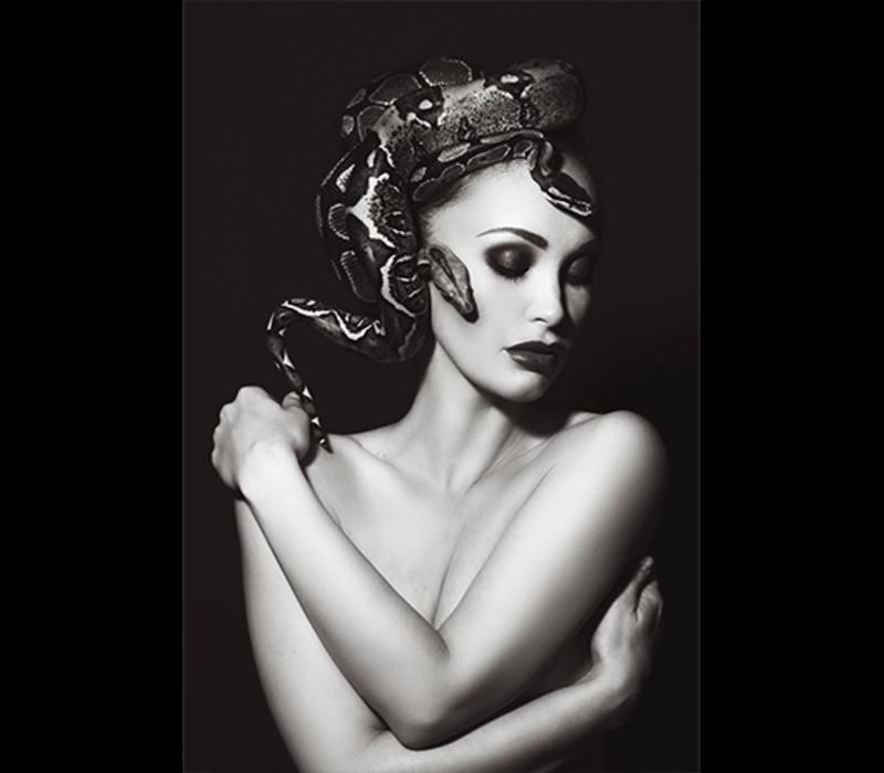 Aluminium Art -  Snake Head