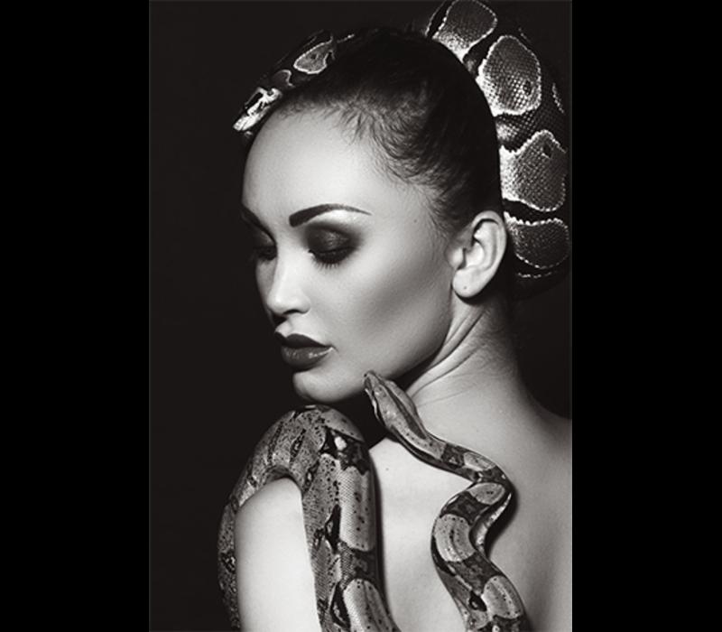 Aluminium Art -  Snake Shoulder