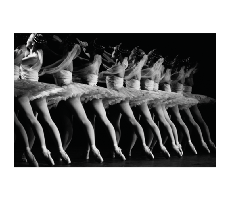 Aluminium Art -  Ballet Dancers in La Bayadere