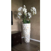 Schelpenvaas wit hoog met orchideeën