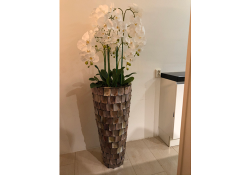 Schelpenvaas bruin hoog met orchideeën
