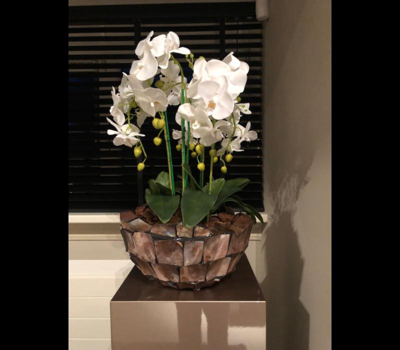 Schelpenvaas bowl - bruin 40x24 cm met orchideeën - Eric Kuster stijl