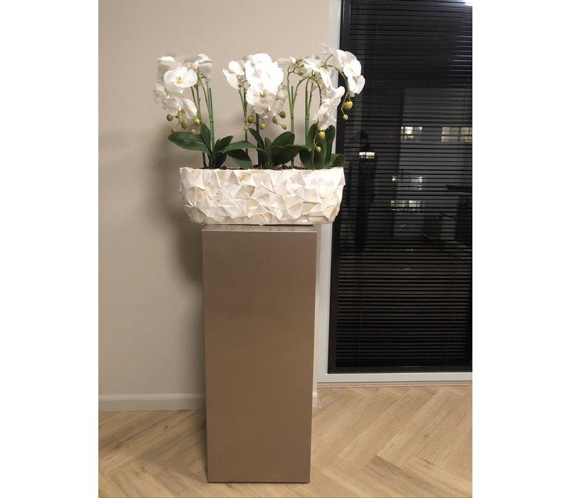 Schelpenvaas breed met orchideëen - wit 60 cm