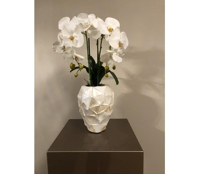 Schelpenvaas klein met orchideeën - wit 17x24 cm