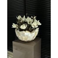 Schelpenvaas bowl - wit 40x24 cm met magnolia's