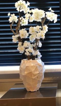 Schelpenvaas met witte bloesems