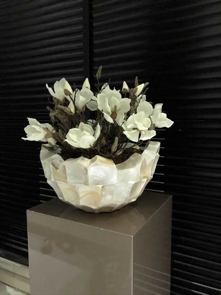 Schelpenvaas bowl wit met witte magnolia