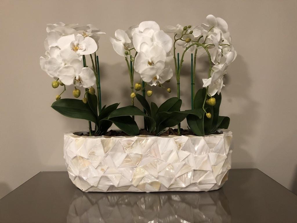 Schelpenvaas breed wit pearl white met orchidee