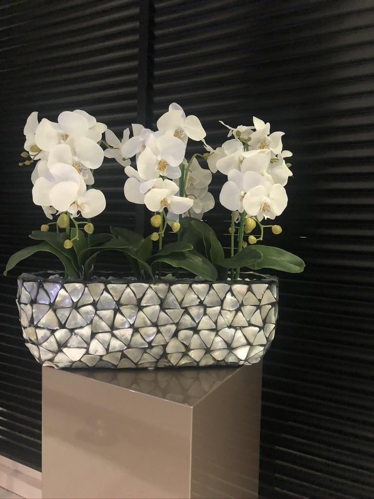 Schelpenvaas bloembak zilver met orchidee