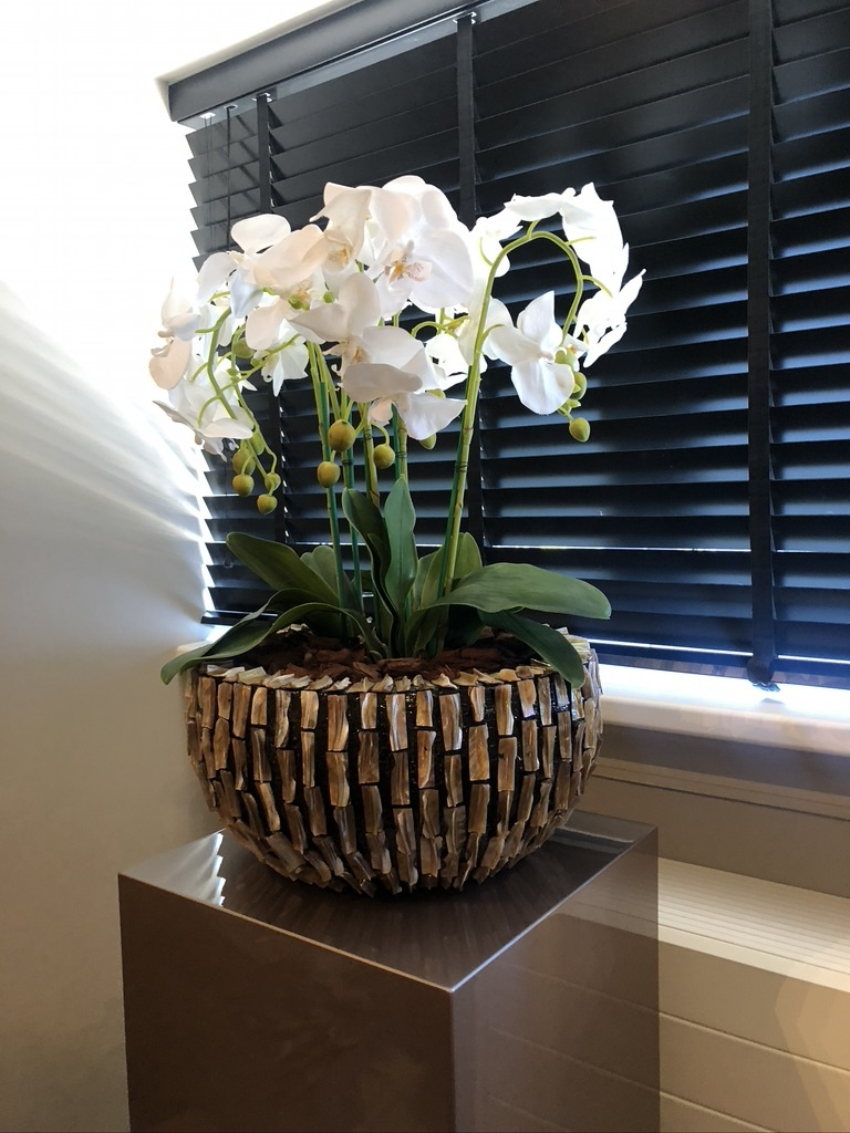Schelpenvaas rough shell bowl 40 cm met orchidee