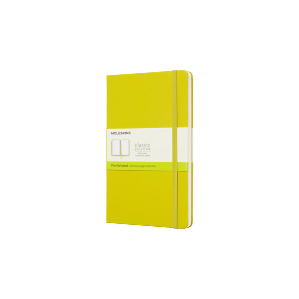 Moleskine Moleskine Notizbuch Hardcover Large Blanko
