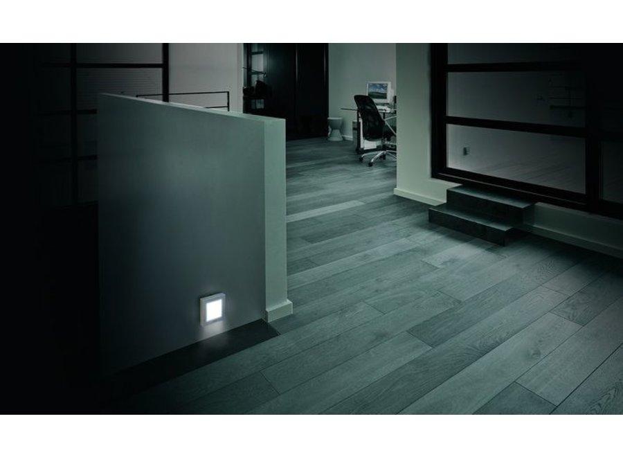 M-E White LED Nachtlicht met Automatisch Schemersensor Silver