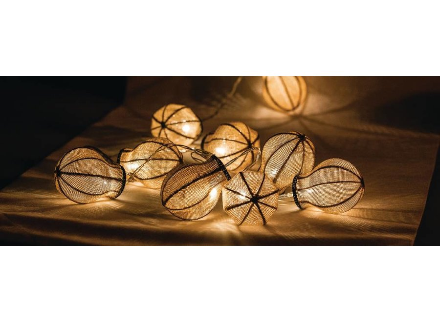 HQ 10 LED's Lichtslinger - Peer