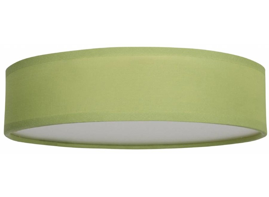 Smartwares 6000.546 Mia LED Plafondlamp 40 cm - Groen