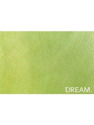 Dream Lente
