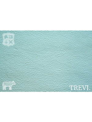 Trevi Aqua - Trevi Leder, turquoise nappa leder met korrel (nappa leder)