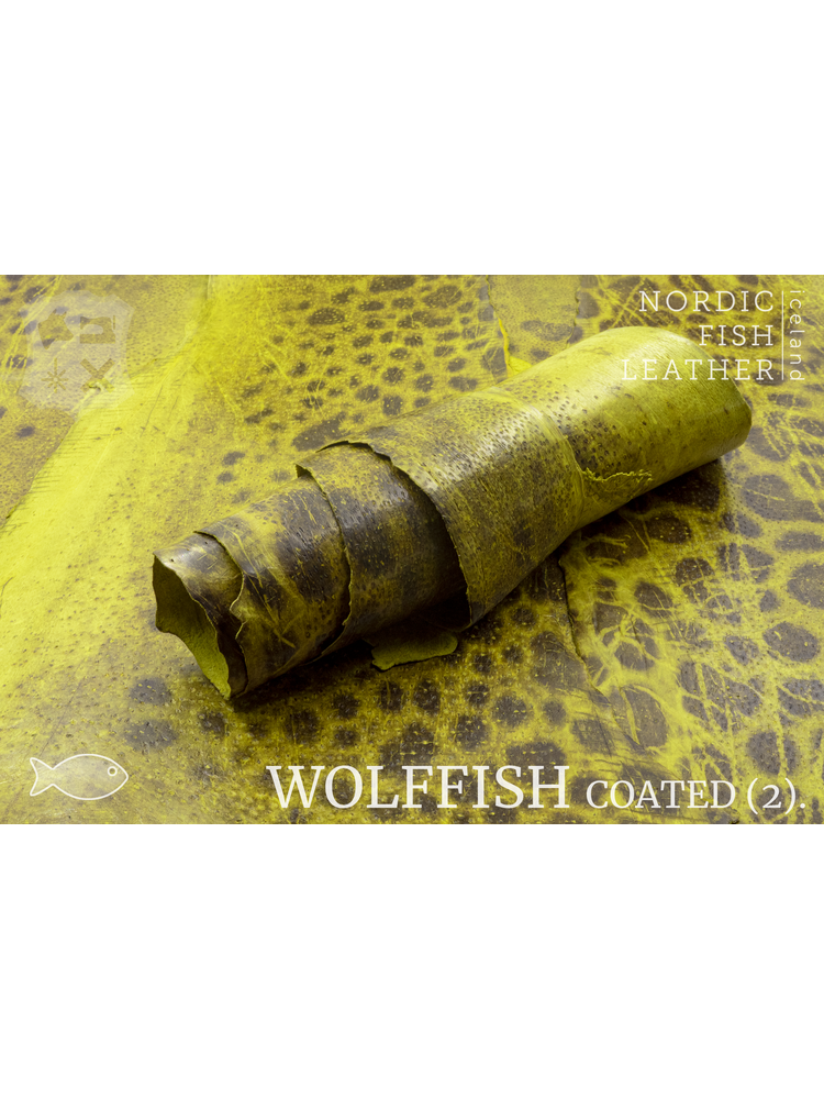 Nordic Fish Leather Gevlekte Zeewolf in de kleur Glói 882s (geel), gefinisht met medium gloss