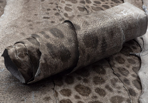 Nordic Fish Leather
