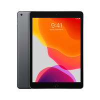 Apple iPad 10.2 2020 WiFi + 4G 32GB Space Grey (32GB Space Grey)