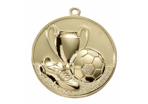 Kampioens Medaille