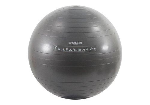 Hummel Yoga Bal 65CM 489807-9340