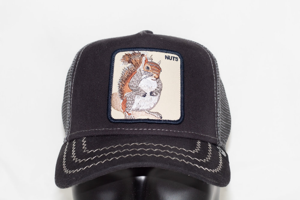 GOORIN BROS GOORIN BROS SQUIRREL MASTER Navy