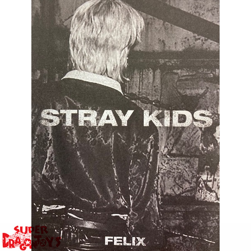 "STRAY KIDS - ""IN LIFE"" MINI PHOTOBOOK - [FELIX] VERSION"