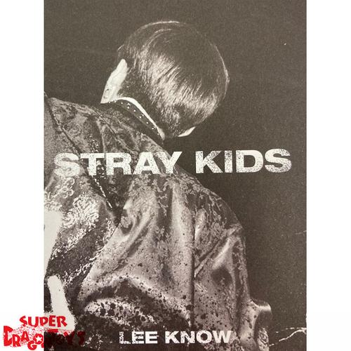 "STRAY KIDS - ""IN LIFE"" MINI PHOTOBOOK - [LEE KNOW] VERSION"