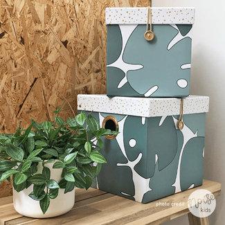 Done By Deer Tiny Tropics Box Set Large
