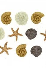 Dress it up 452 Seashells At The Seashore