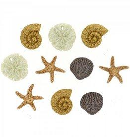 Dress it up Seashells At The Seashore