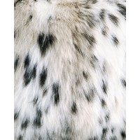 Sierkussen imitatiebont - 45x45cm- Indigo Island Amsterdam - Faux Fur - Lynx