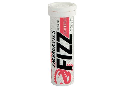 Hammer Nutrition Hammer Endurolytes Fizz