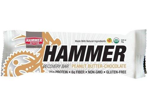Hammer Nutrition Hammer Recovery Bar