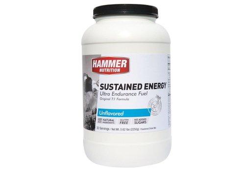 Hammer Nutrition Hammer Sustained Energy 30 Servings