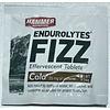 Hammer Nutrition Hammer Endurolytes Fizz ( 1Tablet )