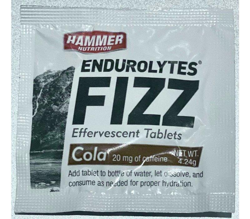 Hammer Endurolytes Fizz ( 1Tablet )