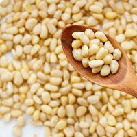Pinienkerne Bio Premium Qualität 12,5Kg