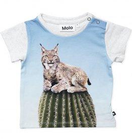 Molo Katzenkaktus T-Shirt von Molo bei Pilzessin