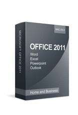 Microsoft Microsoft Office 2010 Home and Business
