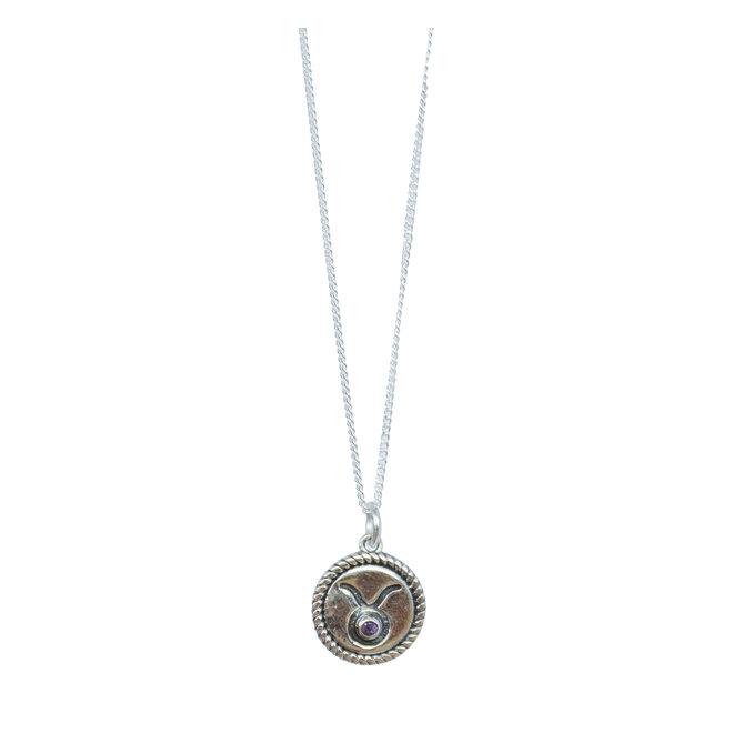 Stier Sterrenbeeld ketting zilver