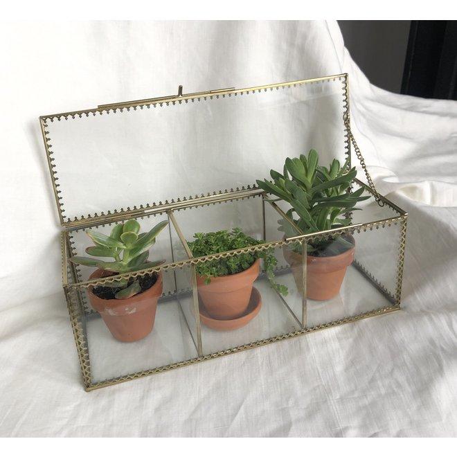Vintage Glazen Box met 3 vakken - Goud
